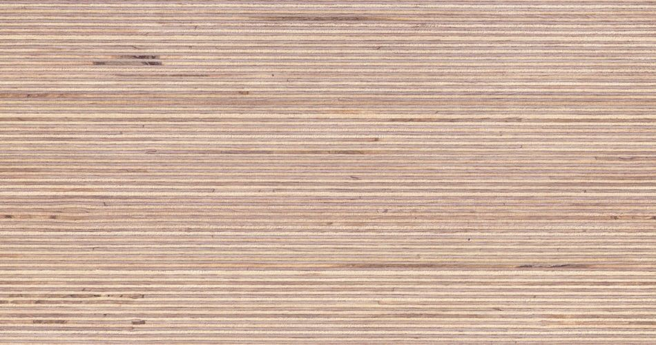 Birch With A Distinctive Wood Grain Texture Plexwood
