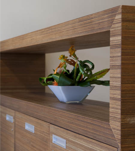 Plexwood® De Meeuwbeemd Nursing Home see through cabinet detail with doors in ply-type meranti strip veneer