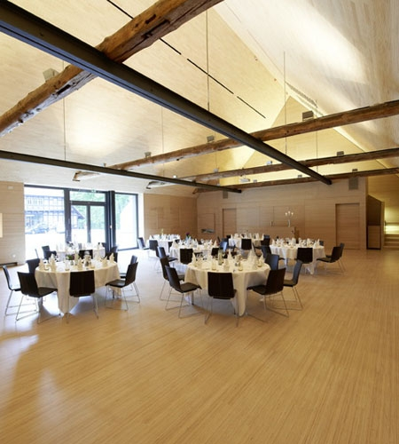 Plexwood® Kränholm Barn conference hall interior with floor, stairs, walls, ceilings, doors and cabinetry in birch