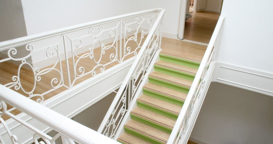 Plexwood® Movement marketing agency hip and colourful birch hardwood flooring and birch staircase treads
